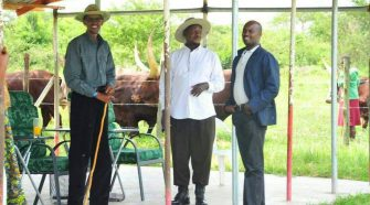 Andrew Mwenda (R) with Presidents Kagame and Museveni at the latter's farm in Kisozi