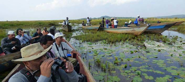 Bird enthusiasts spot birds at Mabamba bay, one of Uganda's best bird habitats